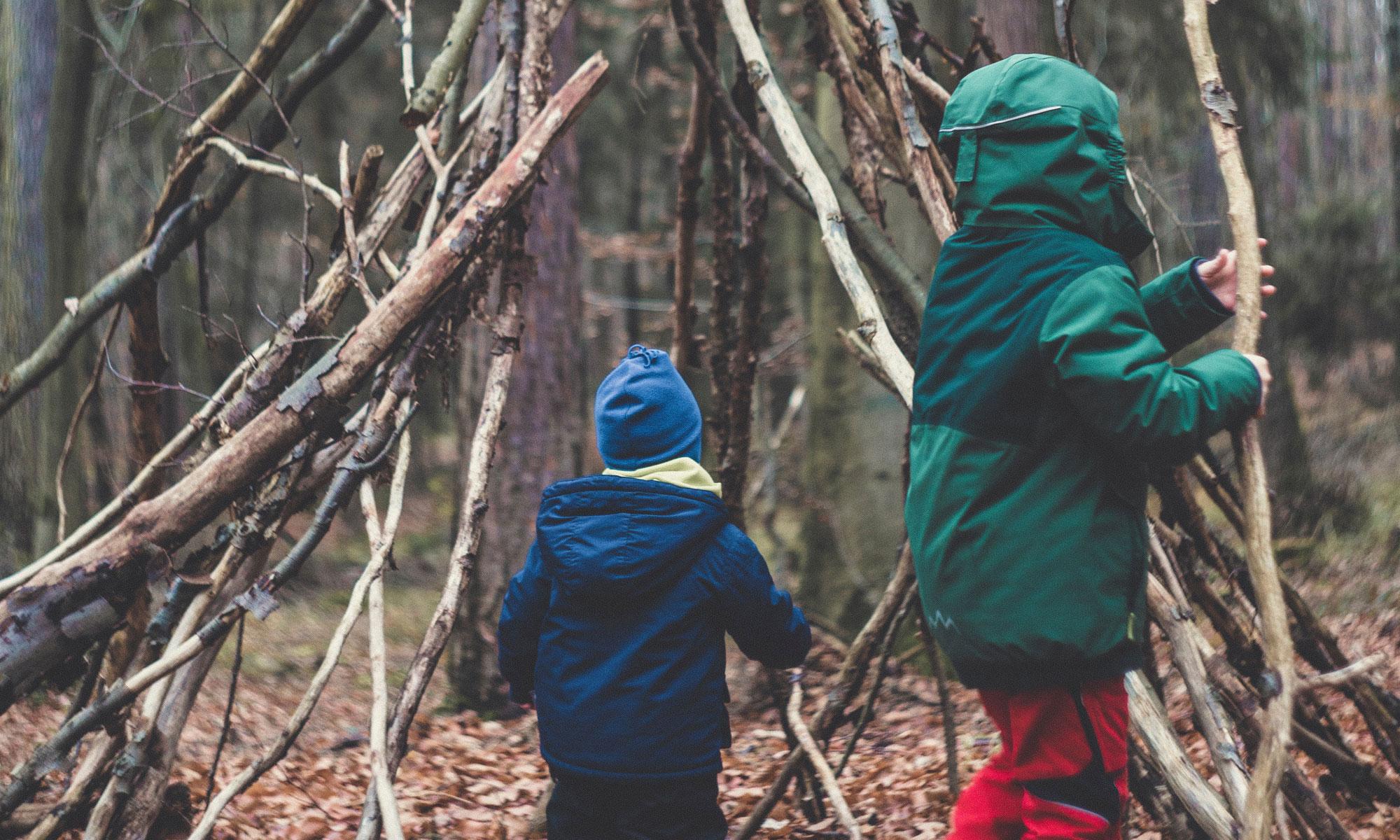 Building a Forest Den