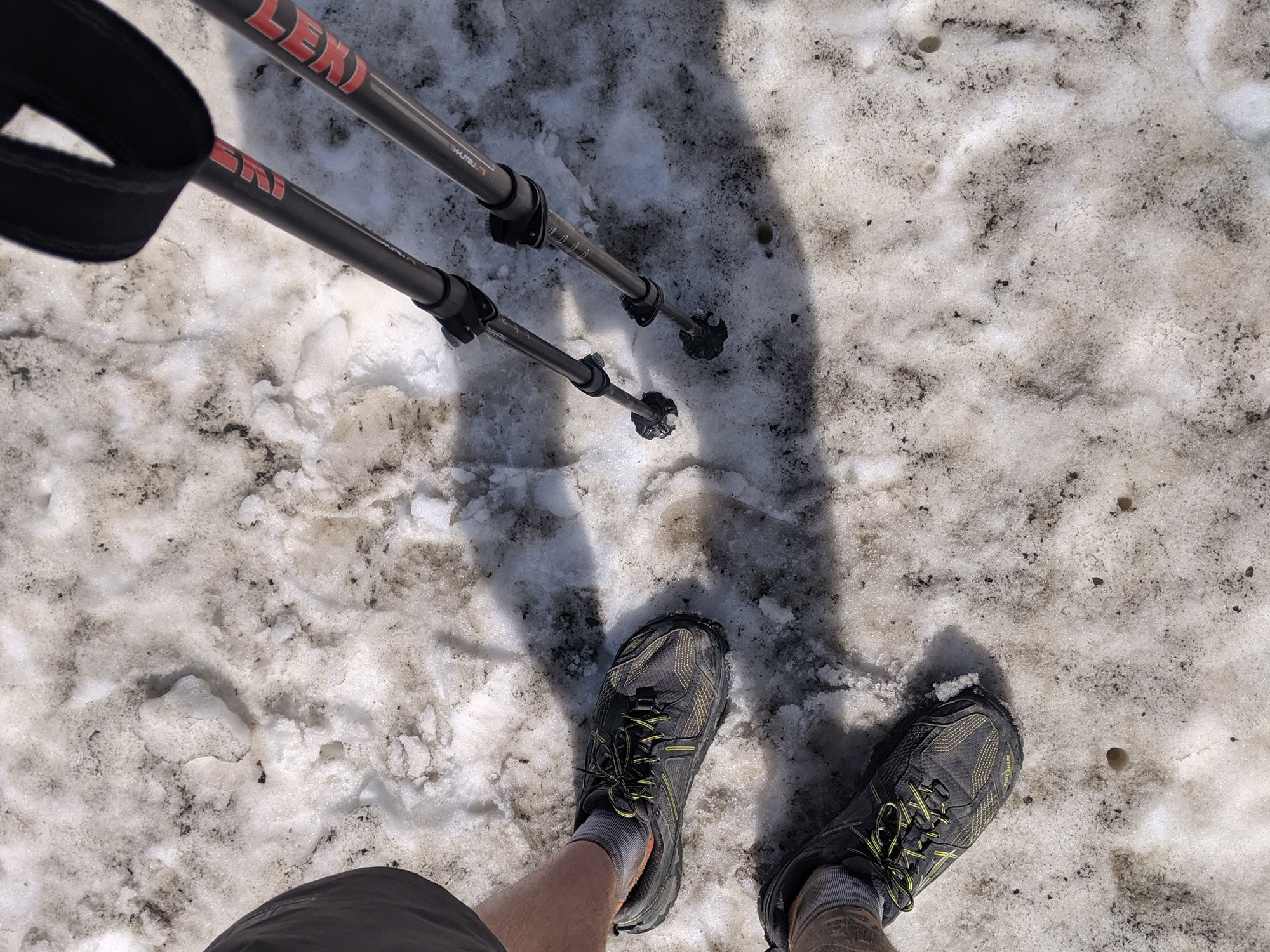 Trekking Poles in Snow