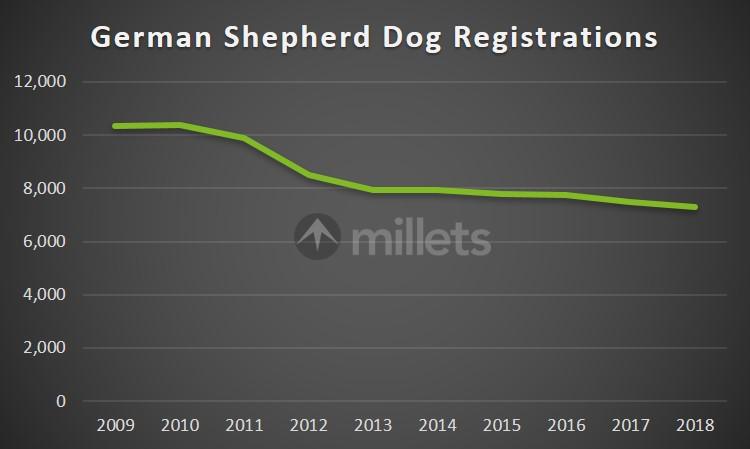 German Shepherd Registrations in the UK By Year
